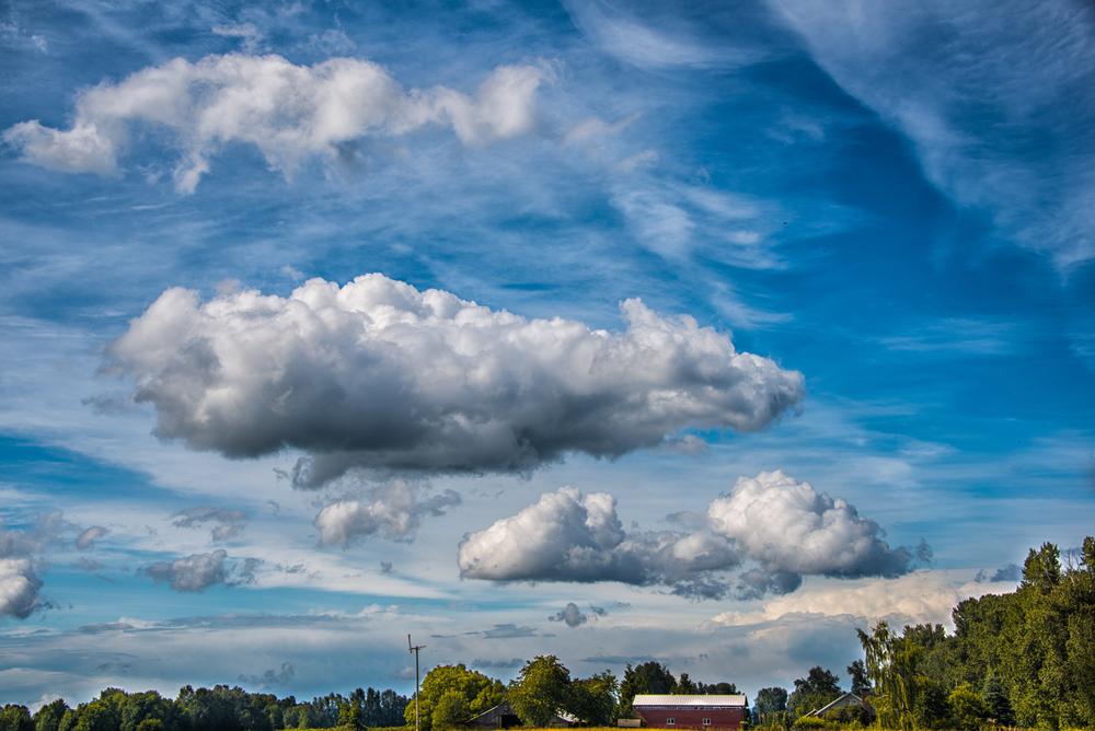 Sky, #8