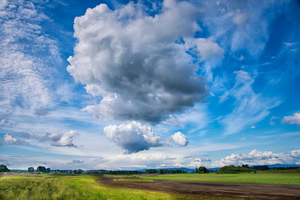 Sky, #13