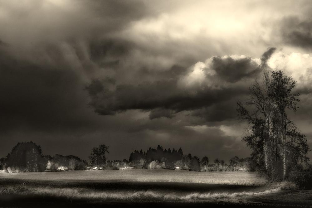 Sky, #34