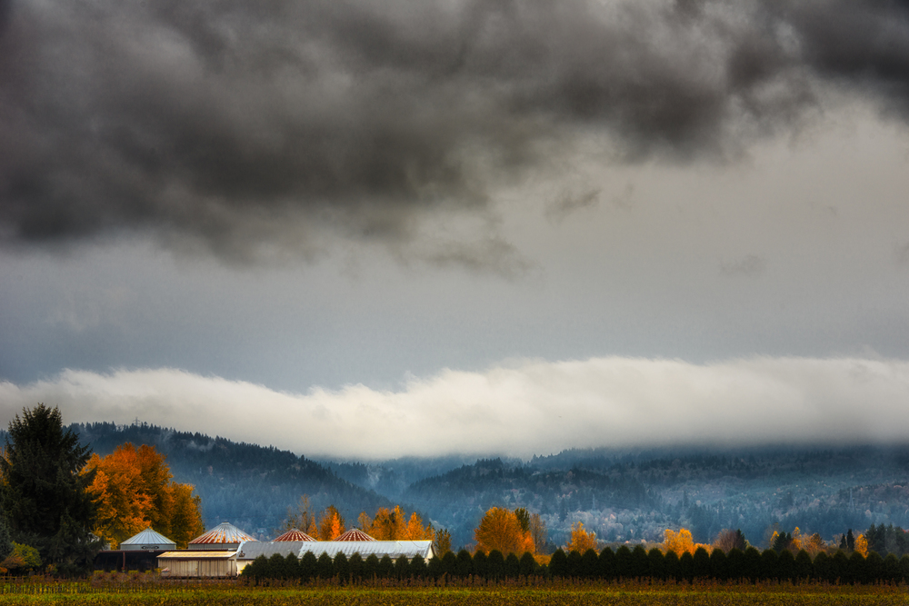 © 2013 Sauvie Sky Studio