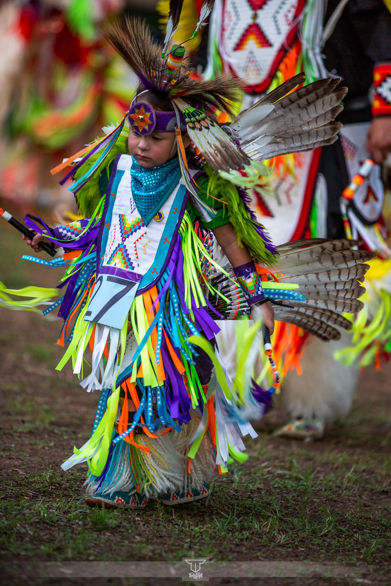 Walters Pow Wow 2013-3.jpg