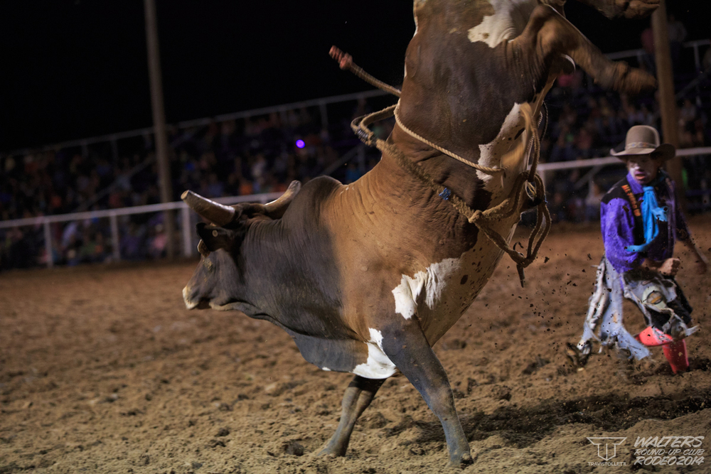 Walters Rodeo 2014 Friday-7309.jpg