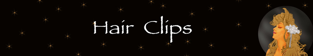 Hair Clips Barrettes Collection Banner