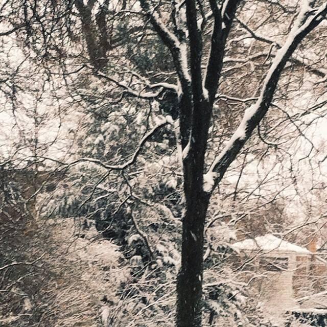 winter..jpg