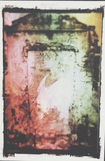 photo (18).JPG