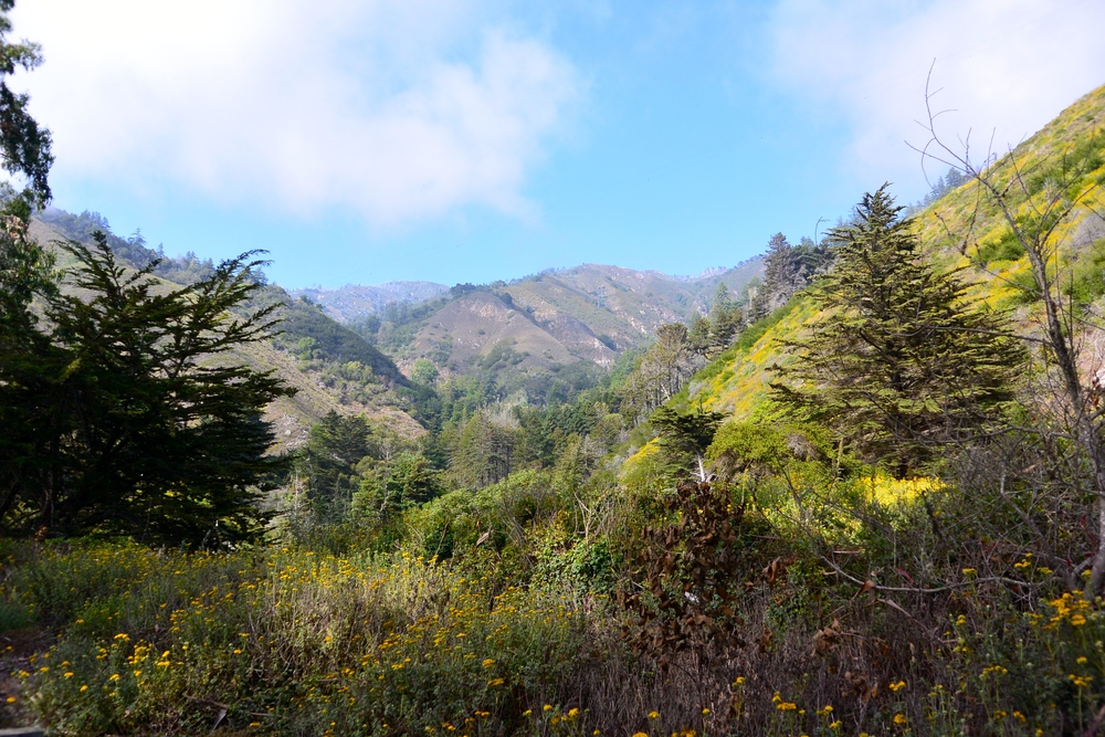 Valley of Big Sur