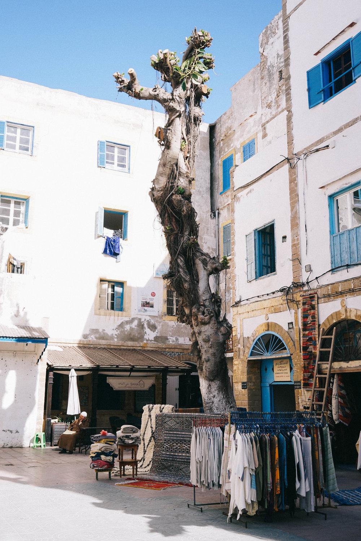 48 Hours in Essaouira Bon Traveler