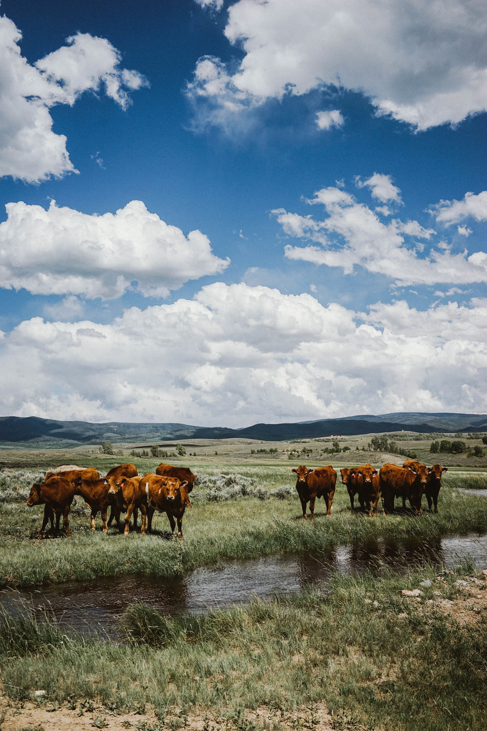 10 Photos to Inspire You to Visit Wyoming