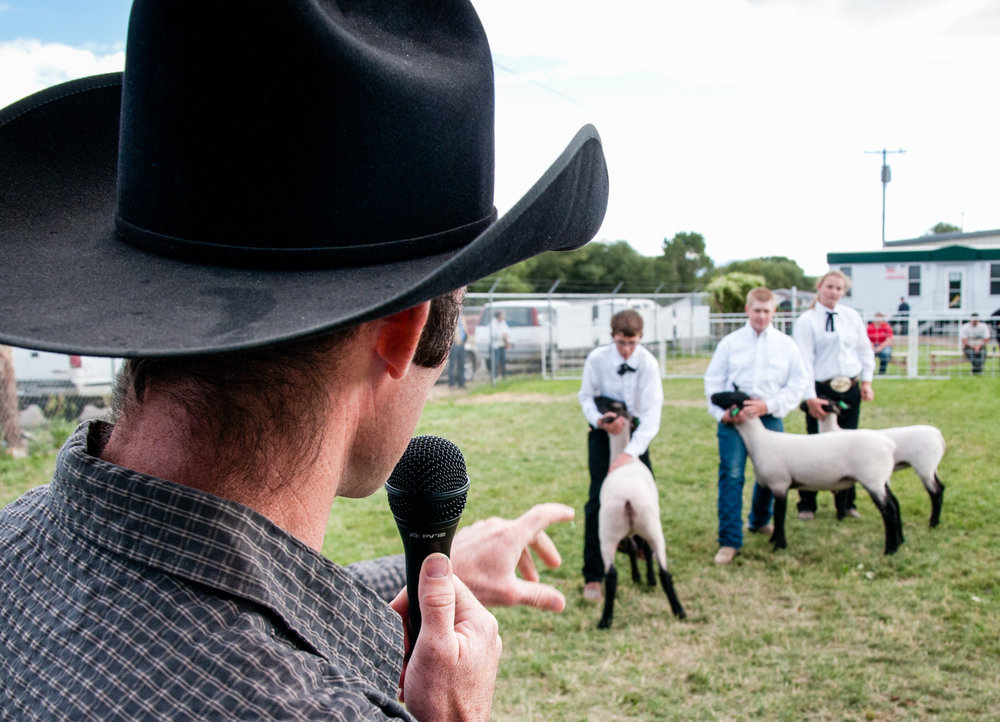 Judges at the fair will use the competition as an opportunity to educate spectators, usually other 4-H families, about particular aspects of raising the animals.