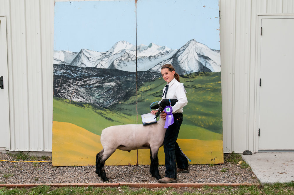 Months of work paid off in August when Kodie's lamb, Buddie, won grand champion market lamb at the Park County Fair.