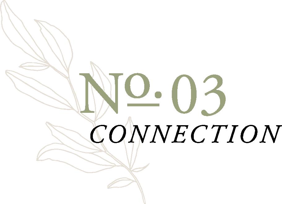 no 03.png