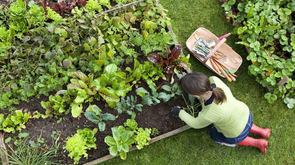 spring_gardening.jpg