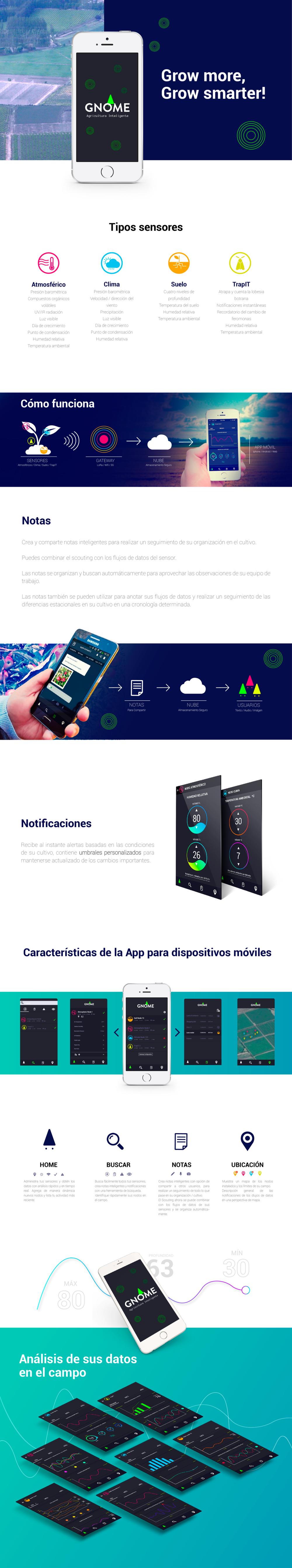 resumen-app-web-02.png