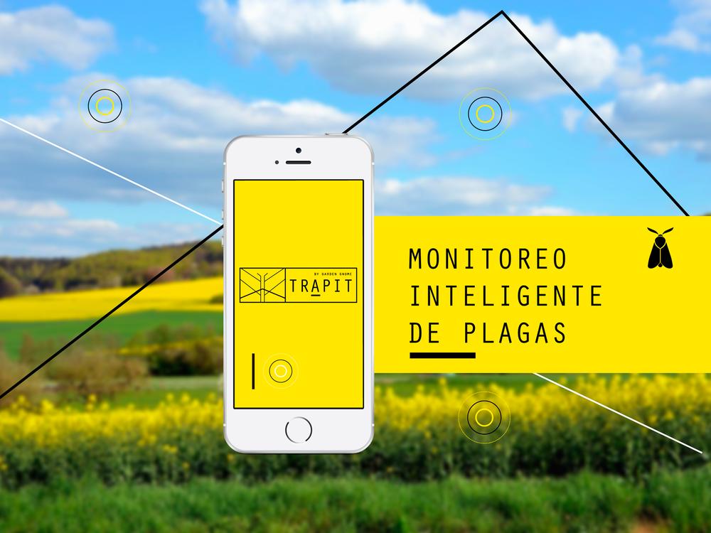 web-español-liviano.png