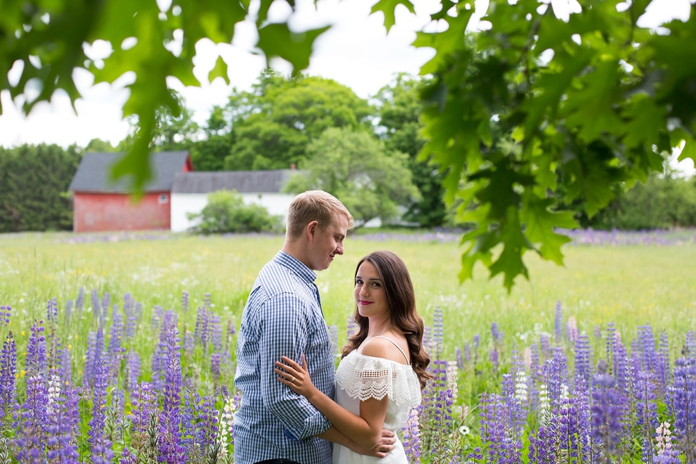 Engagement Pictures with Lupines