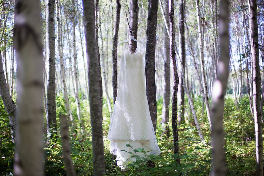 wedding gown in nature