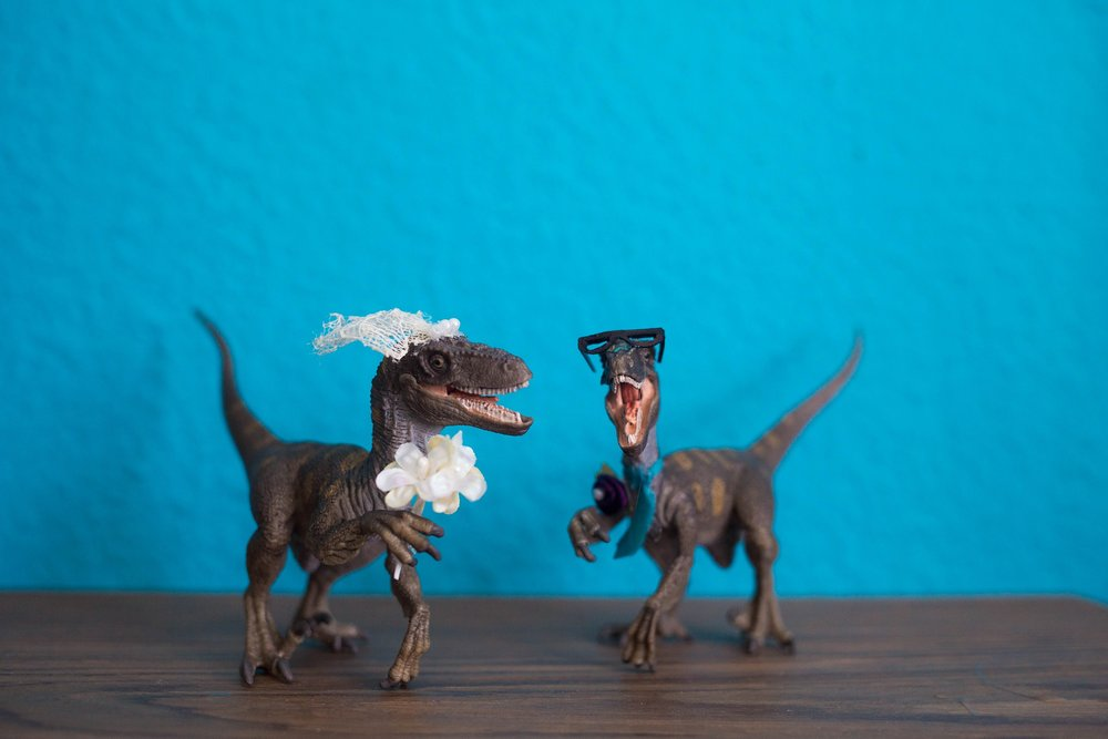 dinosaur wedding cake toppers