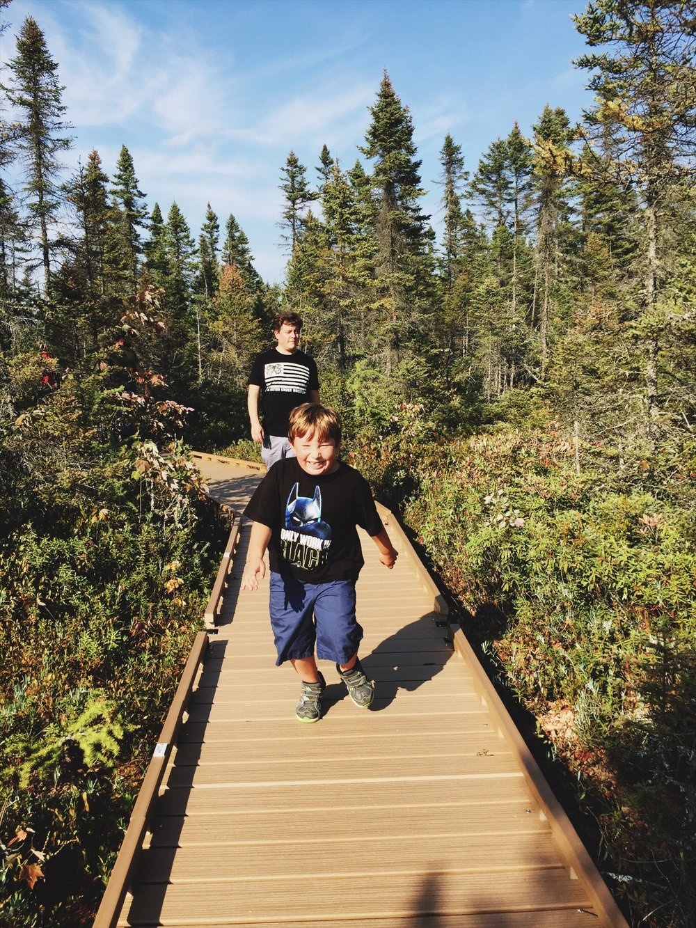 Orono Maine bog walk