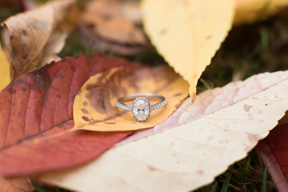 engagement ring in fall leaves