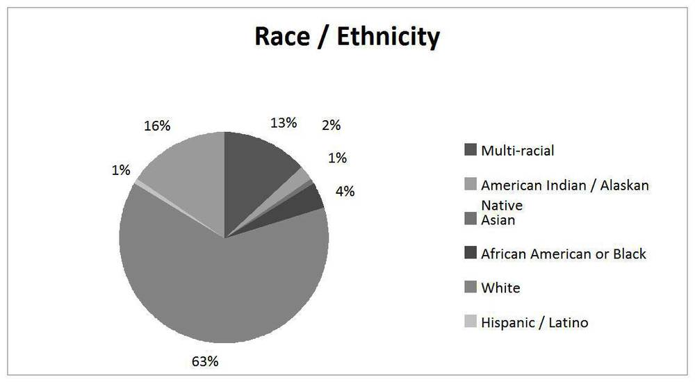 Figure 1:  Pie Chart Regarding Race and Ethnicity