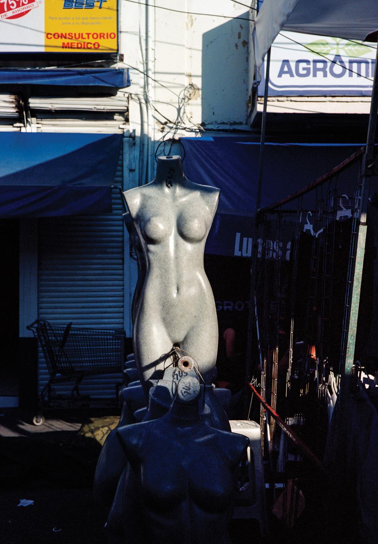 body1.jpg