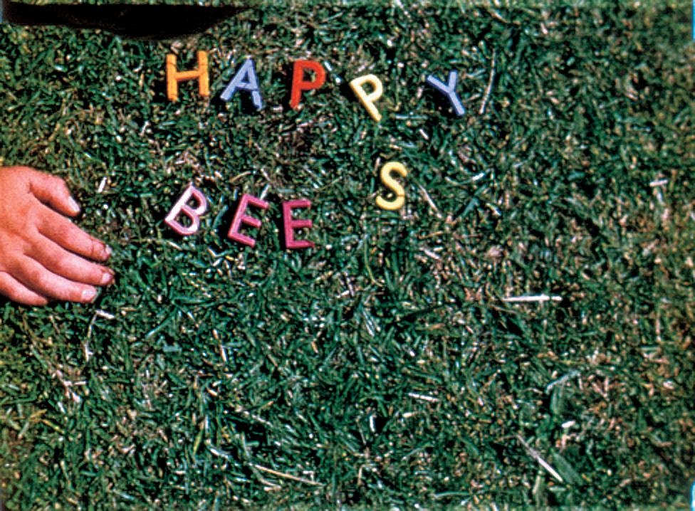 PAC-125-Margaret-Tait-Happy-Bees,-1955.jpg