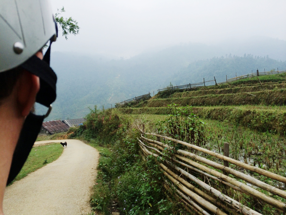 Oto_Vietnam27.jpg