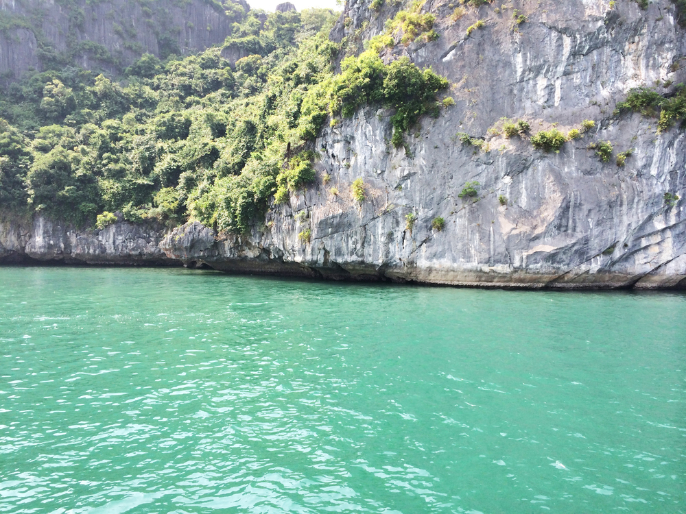Oto_Vietnam29.jpg