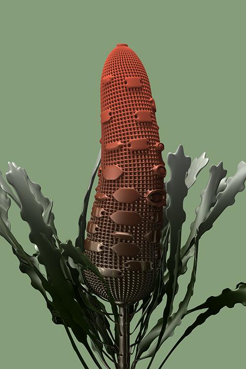 constructive botanics_banksia 02 (2015)  Limited Edition x 20  595mm H x 420mm W  Giclée print on 188gsm Hahnemühle photo rag paper  $450 AUD (unframed)  CODE  BS02_2015