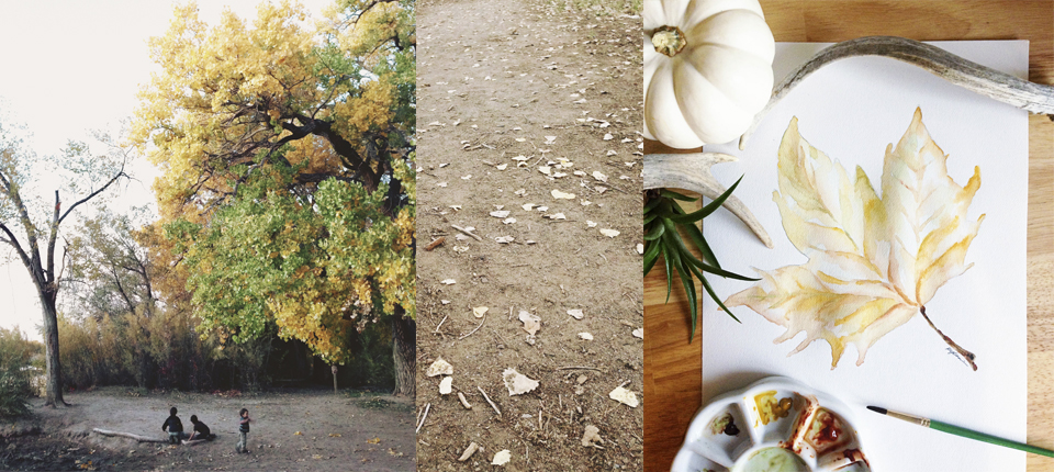 The Bosque Collage.jpg