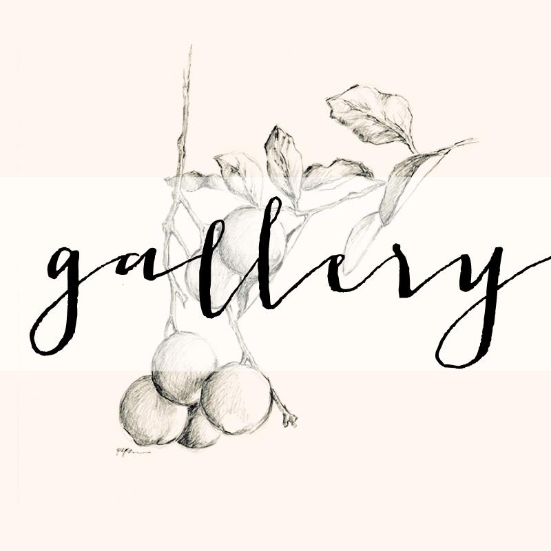 Gallery Link.jpg