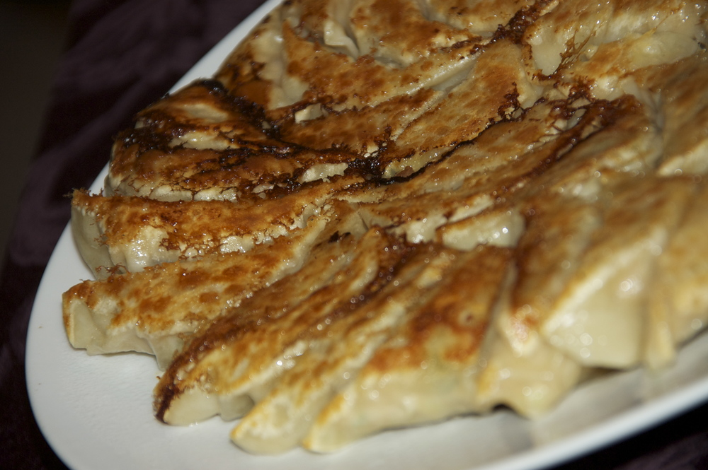 Perfectly panfried potstickers