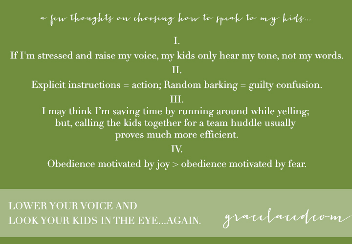 Lowering Your Voice and Looking Your Kids In The Eye...Again. | gracelaced.com