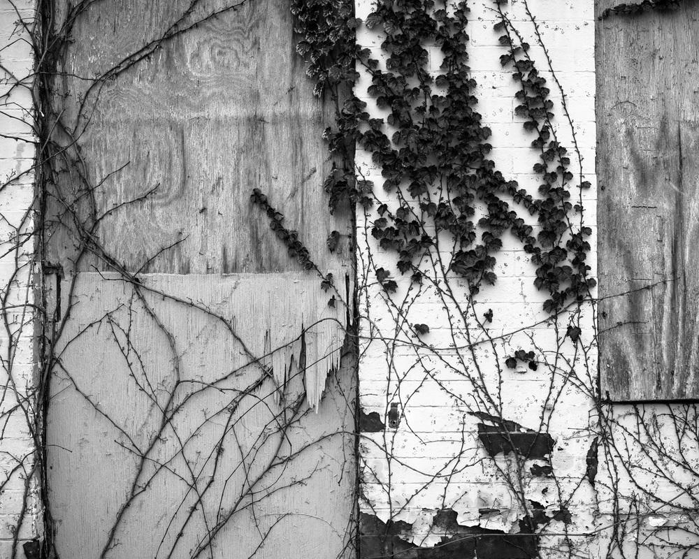 urban snaps-76.jpg