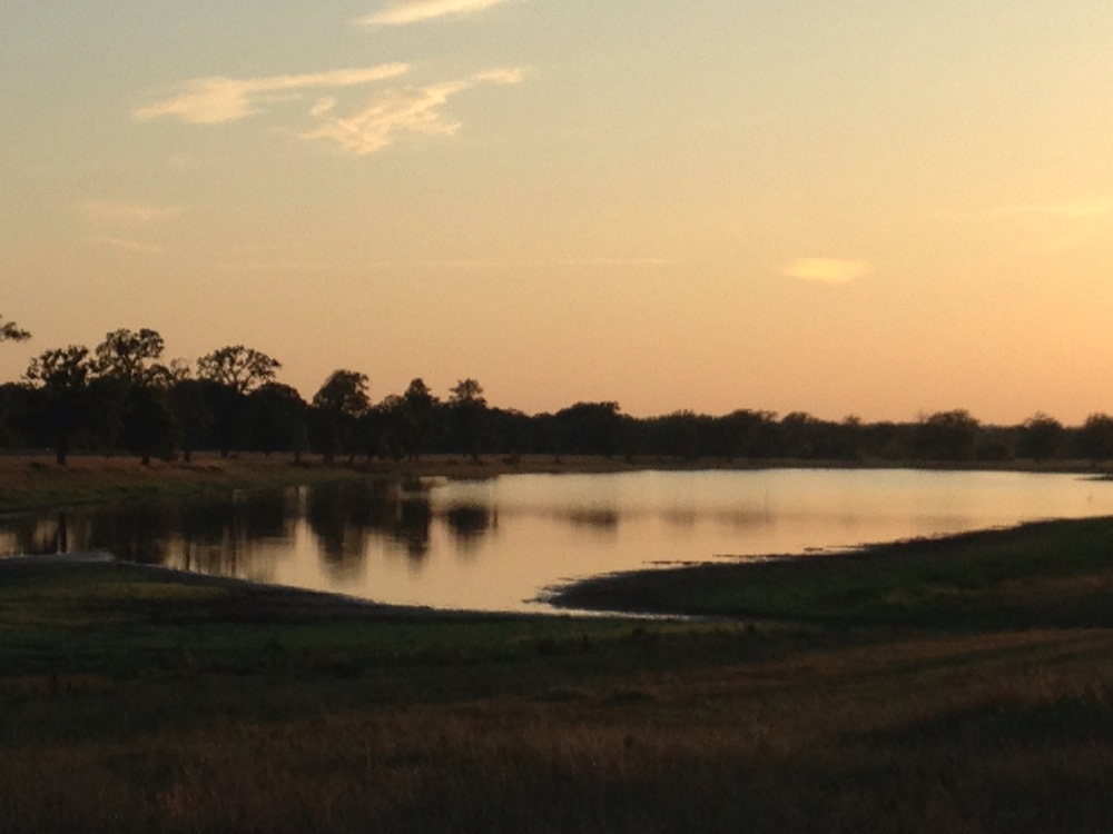 patterson lake sunset.jpg