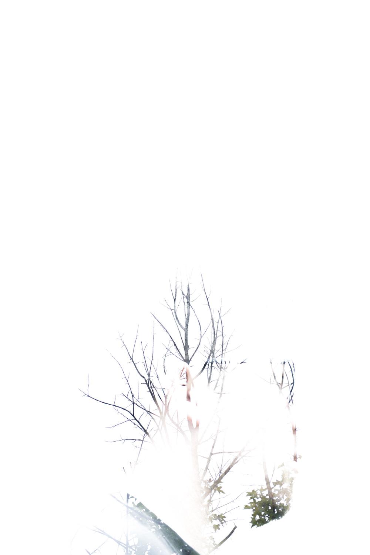 _DSC6206.jpg