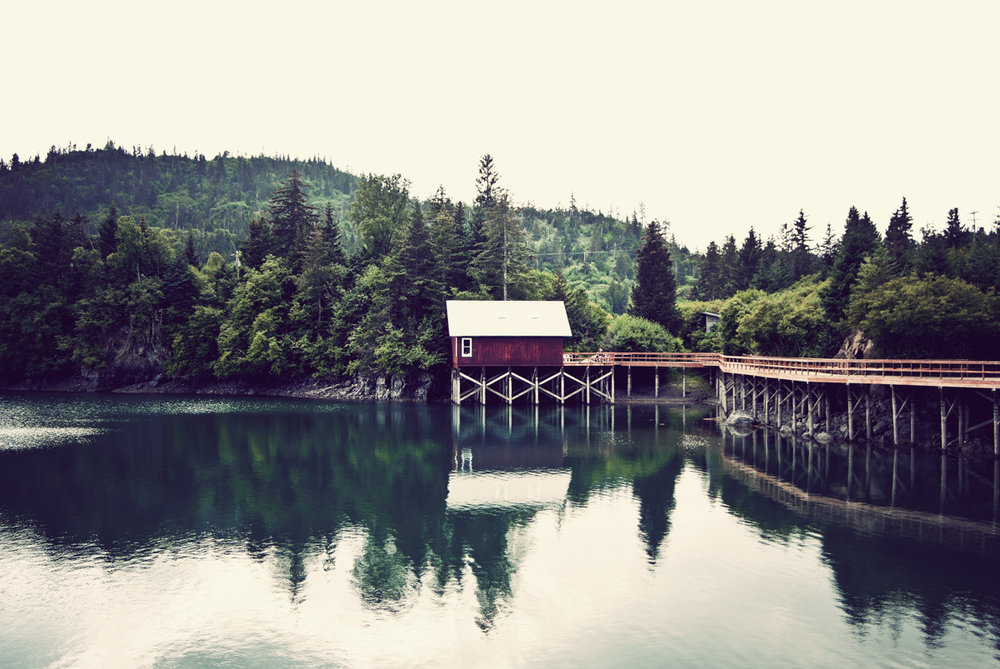 Halibut Cove, Alaska
