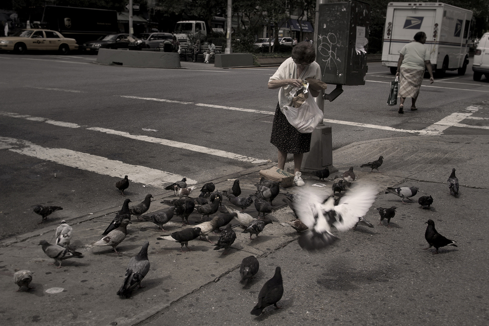 old lady feeding birds.jpg