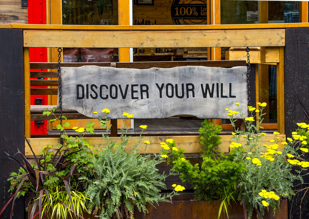 Discover Your Will.jpg