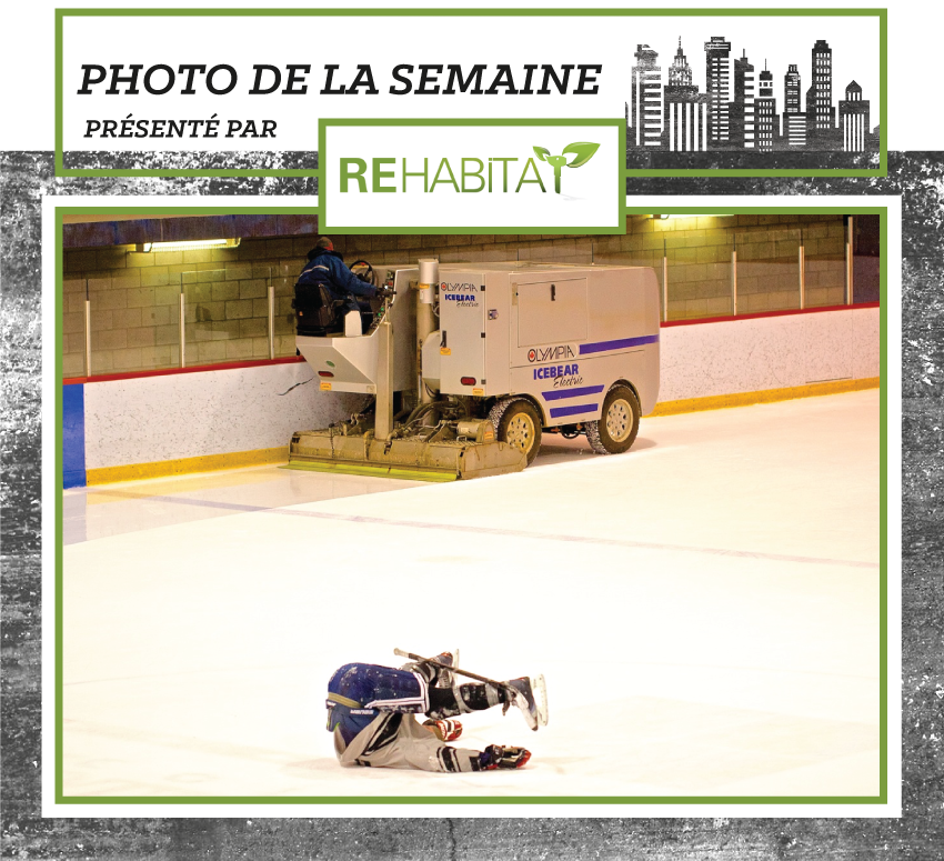 photo_semaine_FR_zamboni.png