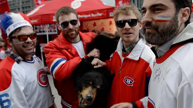 Il ne faut pas vendre la peau de l'ours avant de l'avoir tué...parlez s'en aux Canadiens de Montréal qui ont probablement pris les Blue Jackets comme déjà vaincus...(défaite de 0-10)