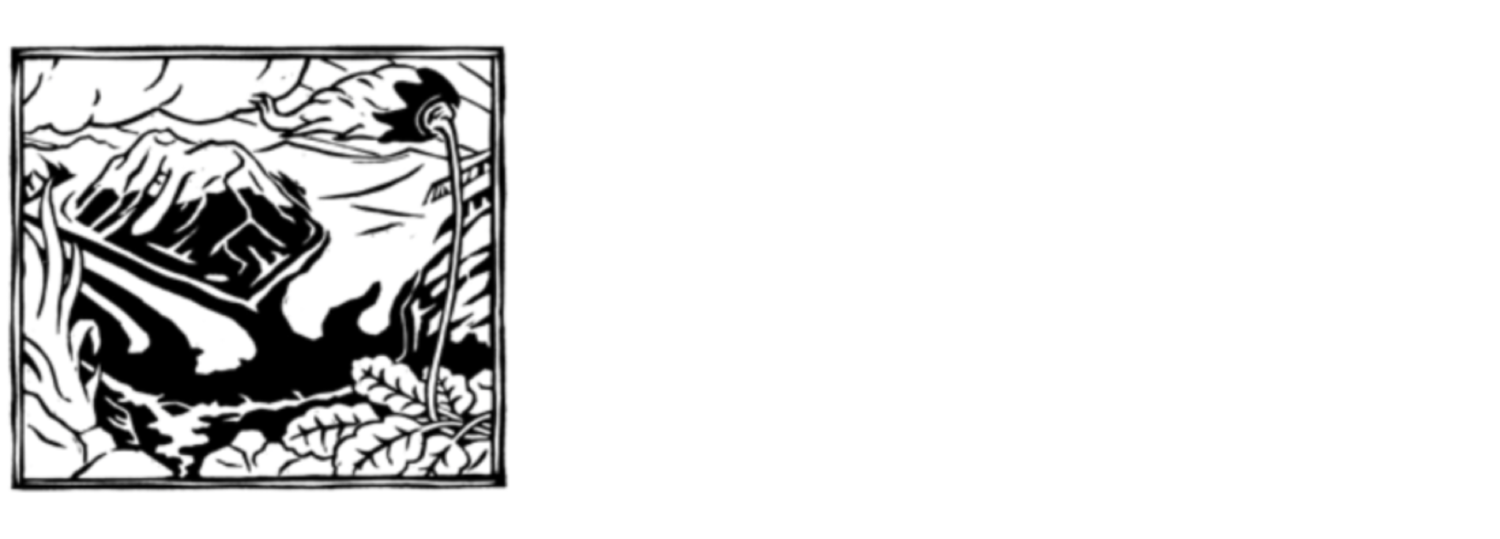 Wrangell Mountains Center