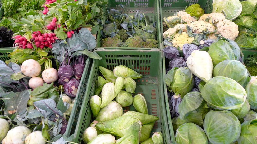 Das Angebot: Obst und Gemüse in den verschiedensten Variationen - frisch und knackig!