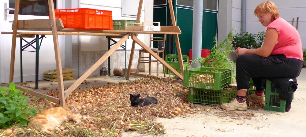 Bei einem Rundgang im Innenhof findet man eine Frau beim Zwiebelputzen und zwei Katzen, die ihr dabei ganz relaxed zusehen.