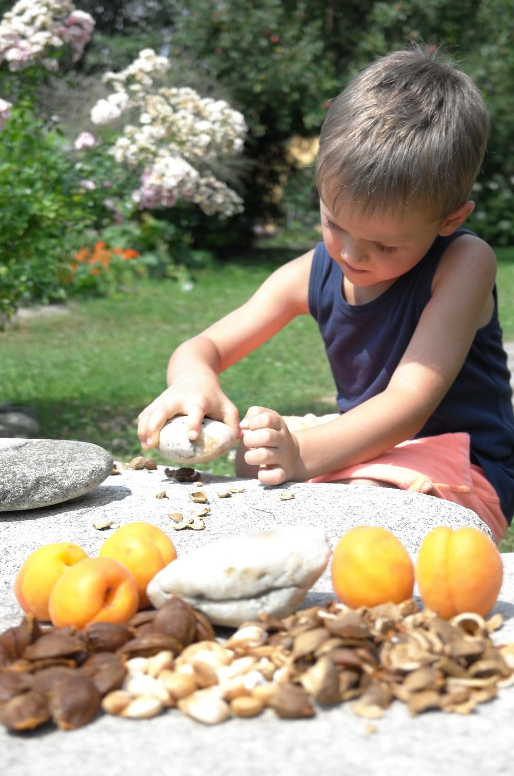 Mein großer Sohn Benedikt ist ein begeisterter Kerneknacker :)