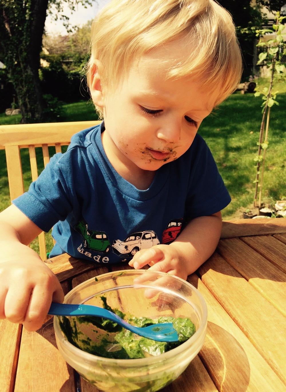 Mein kleiner Sahnemann Konstantin liebt nicht nur Spinat, sondern ist auch schon ein großer Unterstützer beim Sammeln von den Zutaten :)