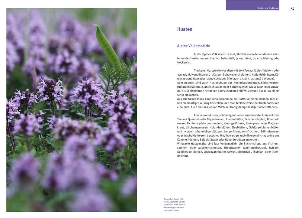 Beispielseite-Alpenmedizin.jpg