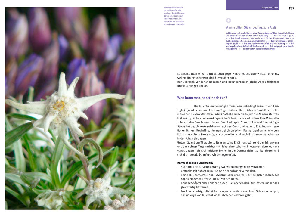 Beispielseite-Alpenmedizin2.jpg