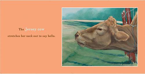 jersey-cow_500.jpg