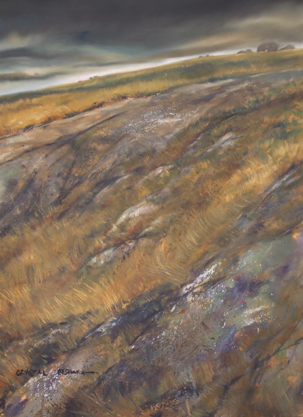 """""""Asperity"""" oil on canvas, 36"""" x 48"""" 2014 $2400 CAD"""